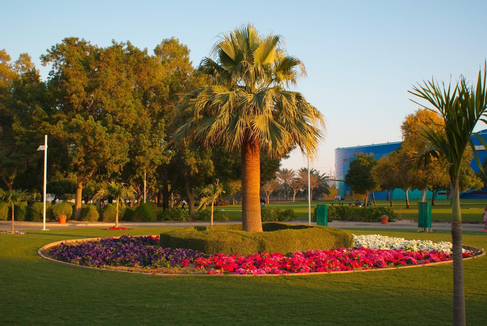 Дубай - Парк Криксайд | Турнавигатор