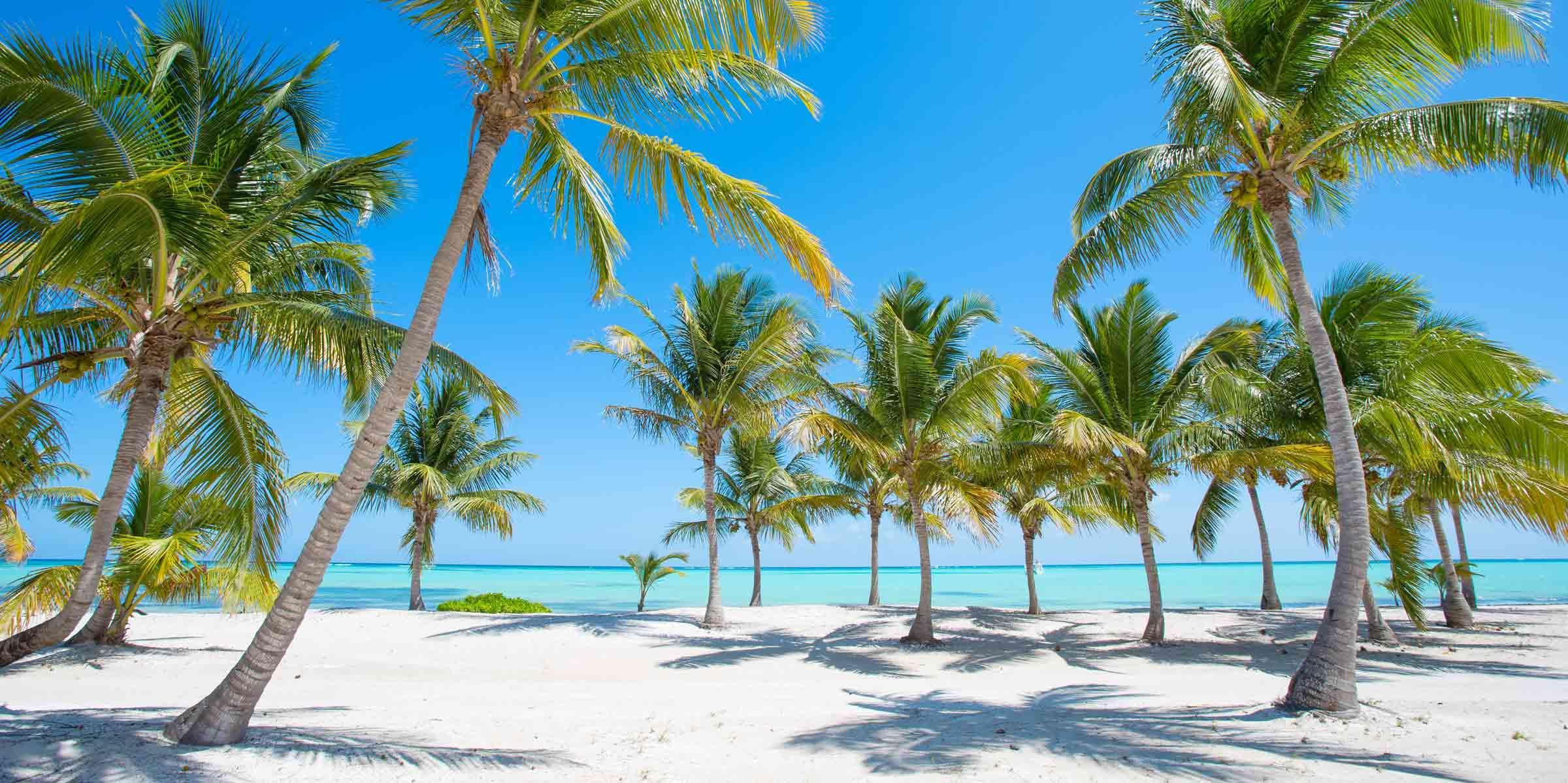 Доминикана - Пляж Баваро | Турнавигатор