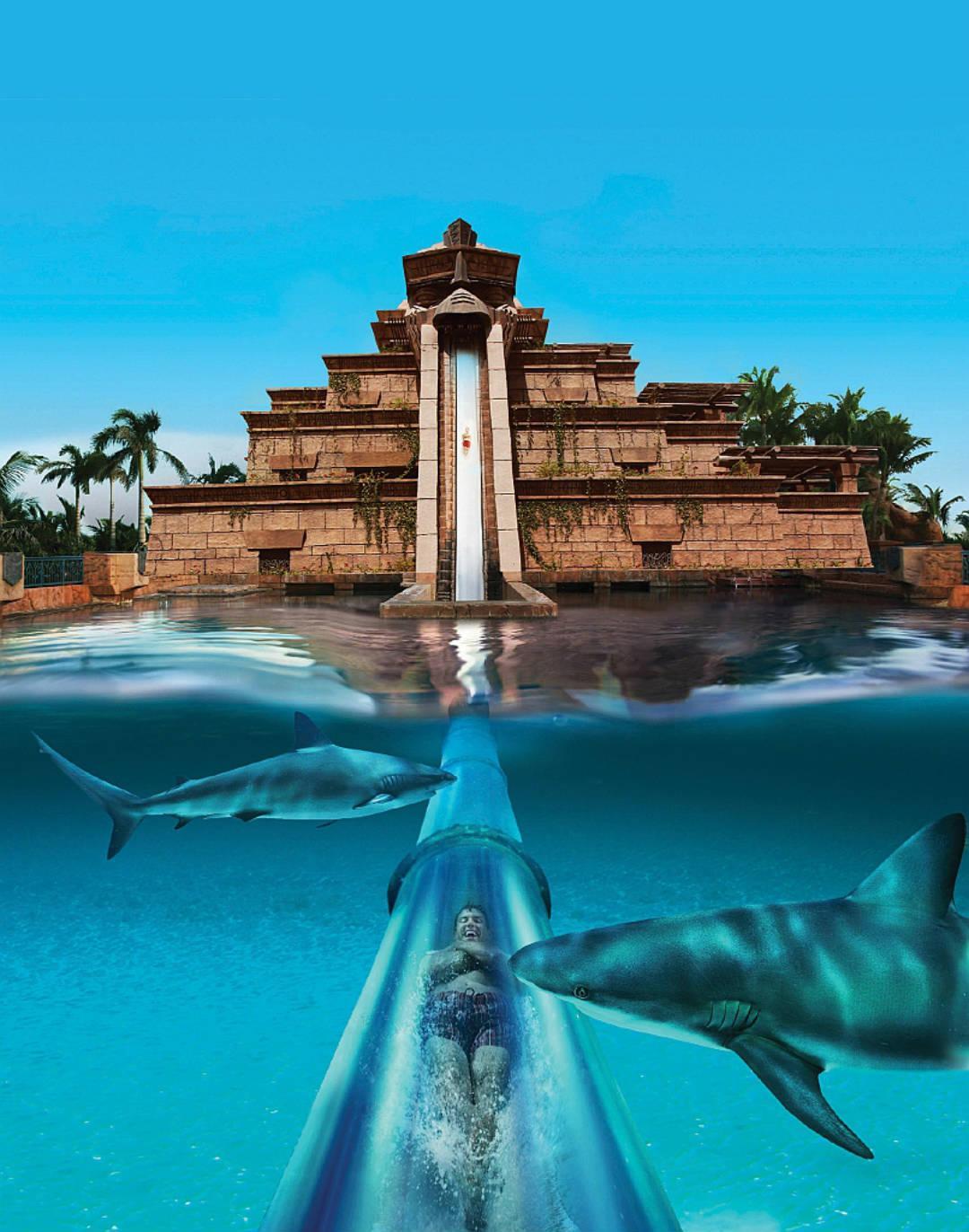 Дубай аквапарк недвижимость в дубай марине