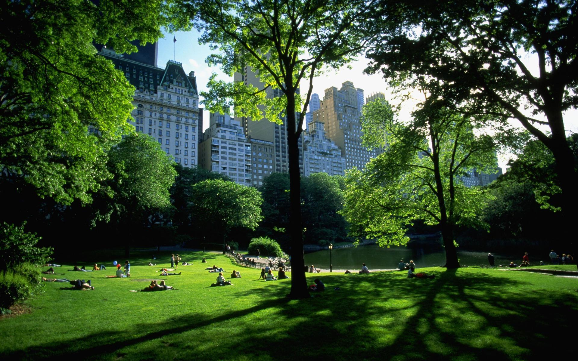 Обои manhattan, центральный парк, new york city. Города foto 18